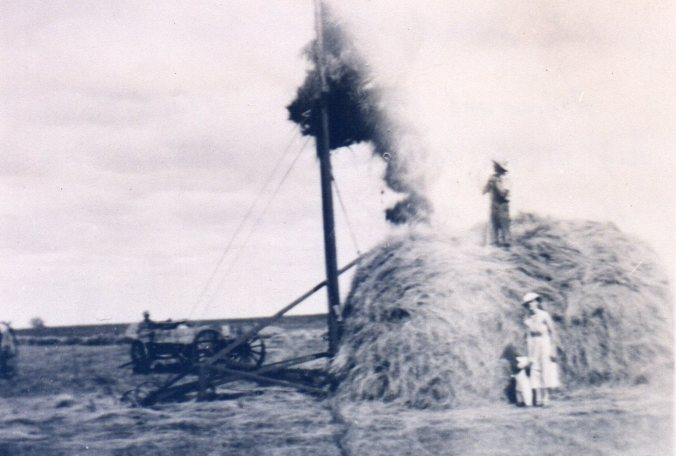 Hay stacking 1939 at Lake Poinsett.jpg