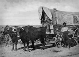 ox-wagon