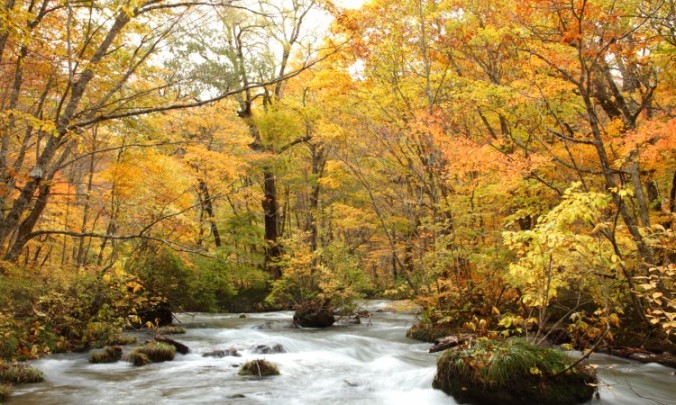 oirase_autumn_1-750x450