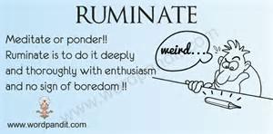 ruminate.png